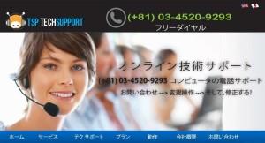 tsptechsupport.com