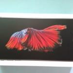 iPhone6 s Plus
